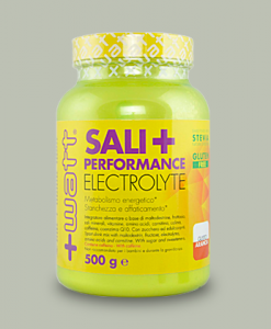 Sali+ Performance Electrolyte 500 grammi di +Watt su integratorisportebenessere.it